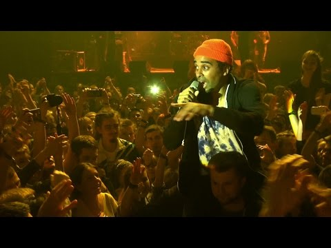 Patrice performing in the crowd @ One Love Sound Fest 2014 [11/22/2014]